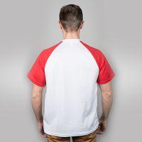 Футболка мужская, белая, сэндвич, хлопок и ПЭ, реглан, красный рукав, 44, S